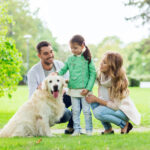 Tips for Socializing Your Dog During a Pandemic